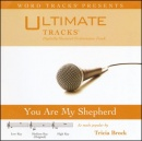 You Are My Shepherd (Ampb: Tricia Brock) image