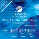 Pray On The Little Days image