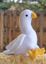The Spirit Dove Plush