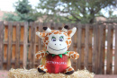 Faithfulness: The Mango Giraffe Plush