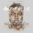 Mind of Hollis