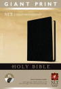 NLT Holy Bible (Giant Print)