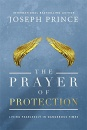 The Prayer of Protection: Living Fearlessly in Dangerous Times (Paperback)