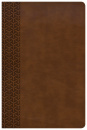 KJV Everyday Study Bible (Tan)