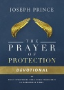 The Prayer of Protection Devotional: Daily Strategies for Living Fearlessly In Dangerous Times