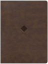 CSB Day-by-Day Chronological Bible (Brown)
