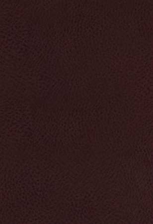 KJV Study Bible (Bonded Leather, Burgundy, Indexed, Full-Color)