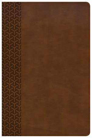 Everyday Study Bible (British Tan LeatherTouch)